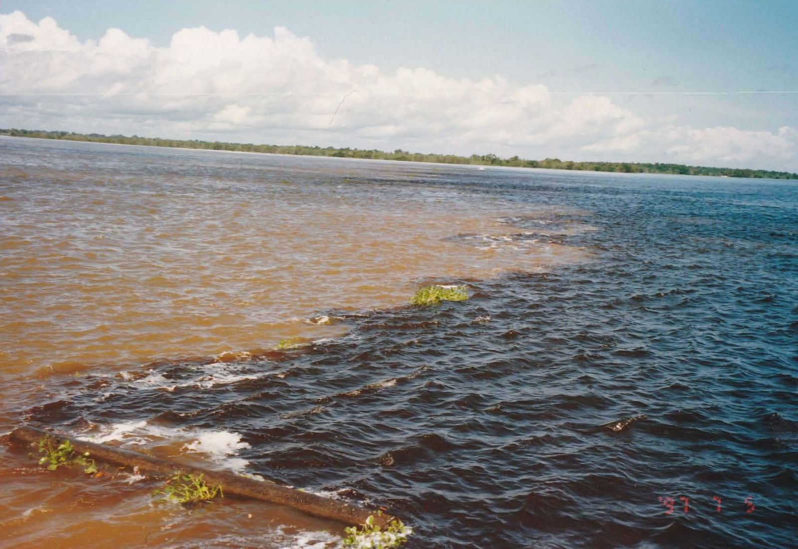 アマゾン川・ネグロ川: JRC Radi...